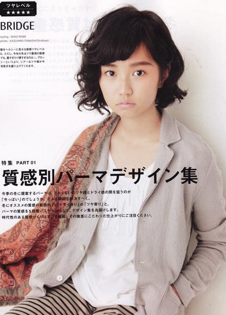 Shinbiyo12a